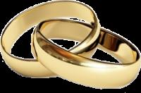 Fedi di matrimonio in oro giallo